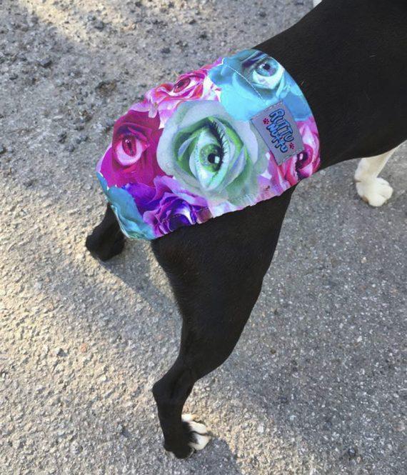 ruususilmä